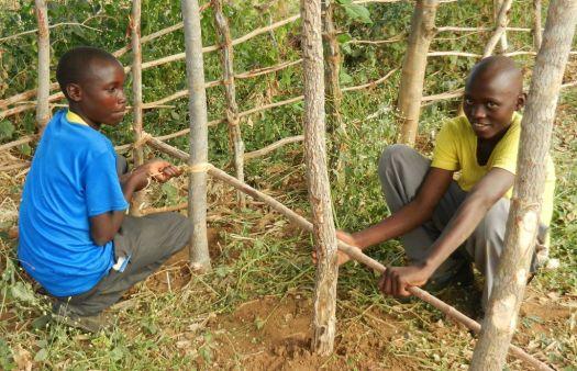 2 Boys fencing the Garden